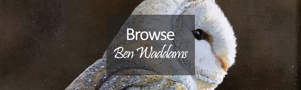 New Art Ben Waddams Original Paintings