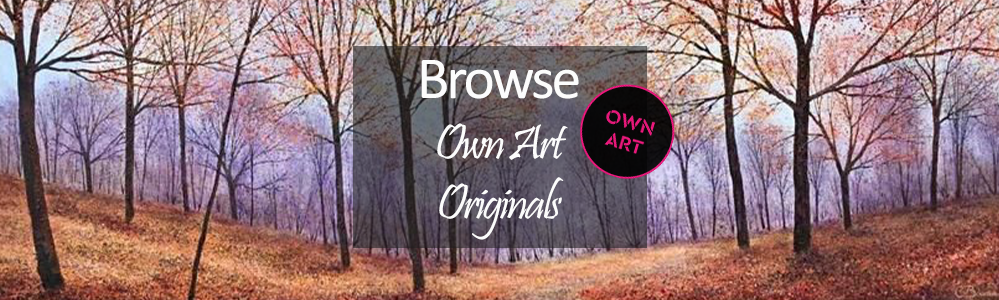 Own Art - 10 Months Interest Free