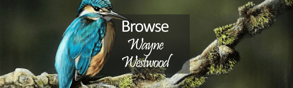 Wayne Westwood Art - Original Paintings - Kingfisher